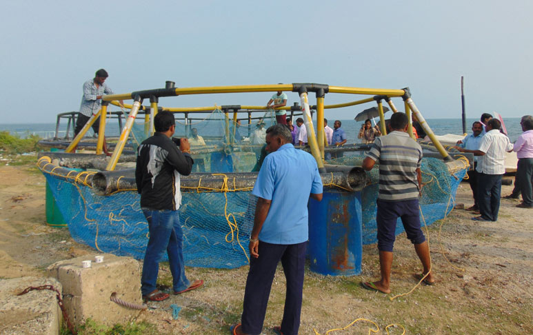 Demonstration-of-fixing-net-cage1.jpg